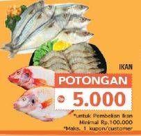 Promo Harga IKAN FRESH  - LotteMart